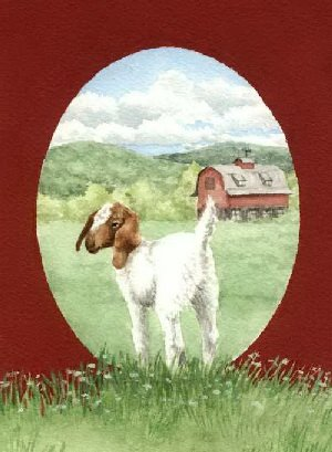 book by Gail Bowman, Country Tales book of humor